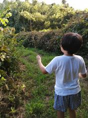 自閉症 育児 特徴 関わり方