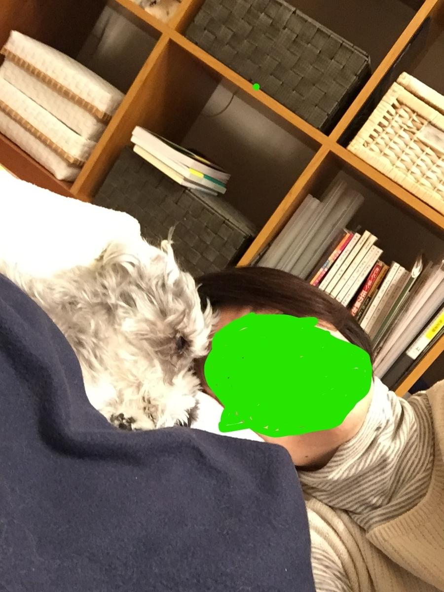 f:id:Lovechan:20191230171038j:plain