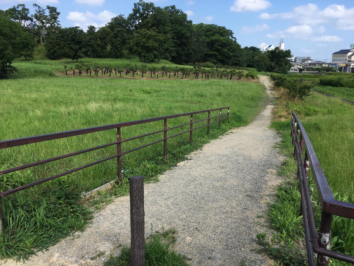 世界遺産、津堂城山古墳への道