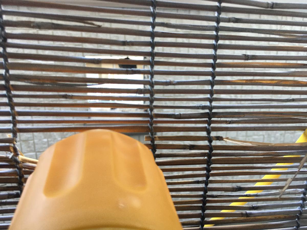 マグナムジェットで蜂の巣を攻撃、スタンバイオーケー