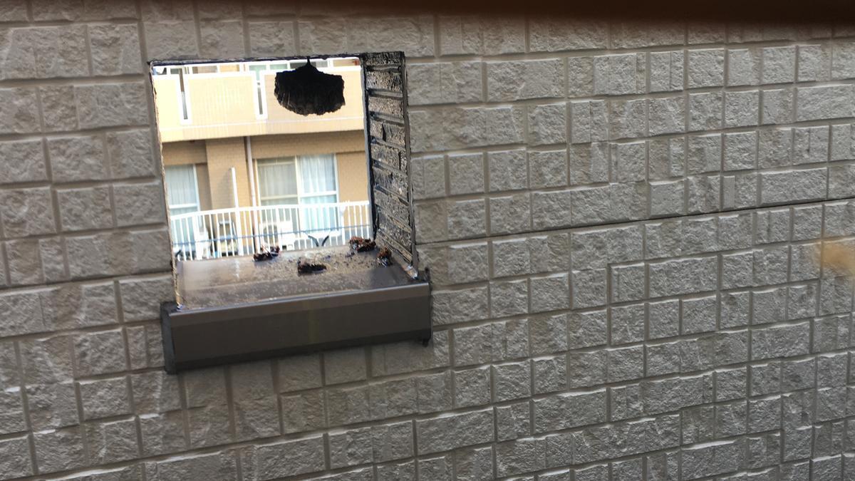 マグナムジェットで蜂の巣を攻撃後2