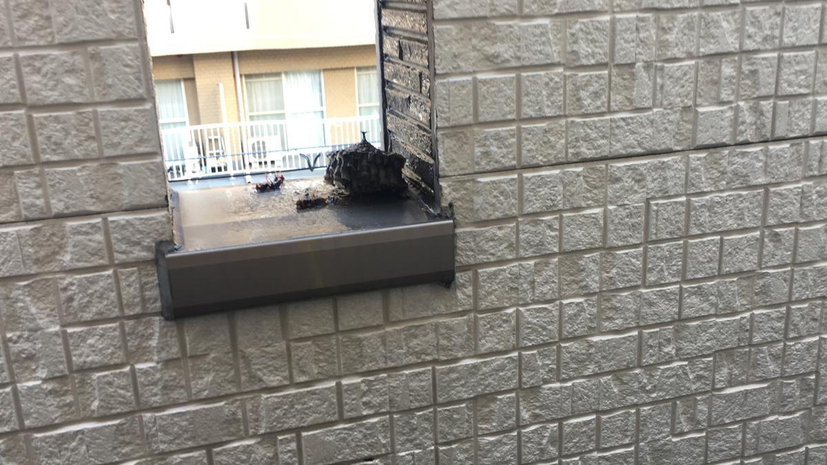 蜂の巣が落ちる