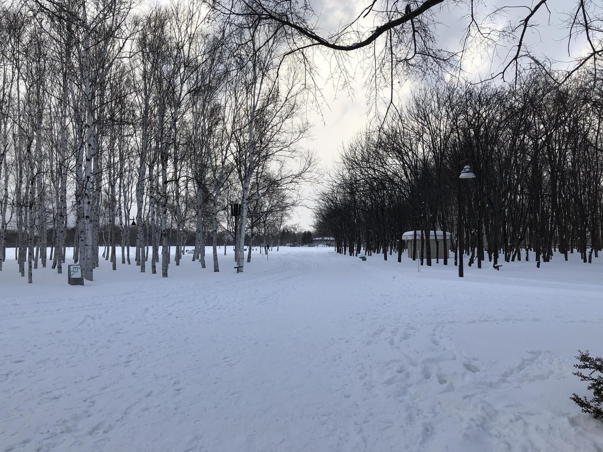 冬の前田森林公園の景色