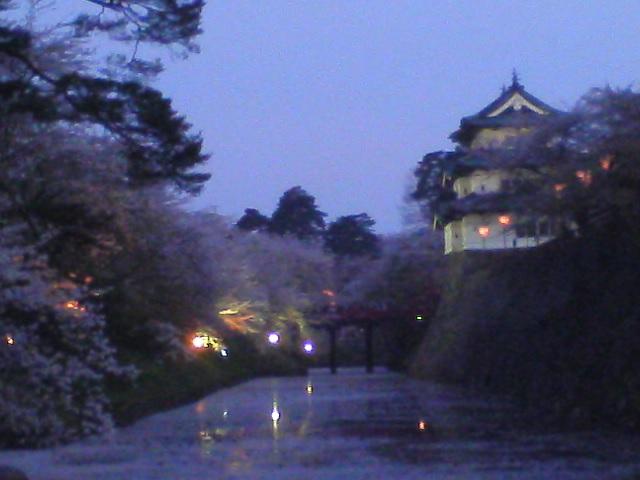 弘前の桜を定番の位置から速報しました
