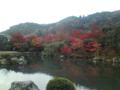 天龍寺の紅葉を携帯電話で撮影してみる