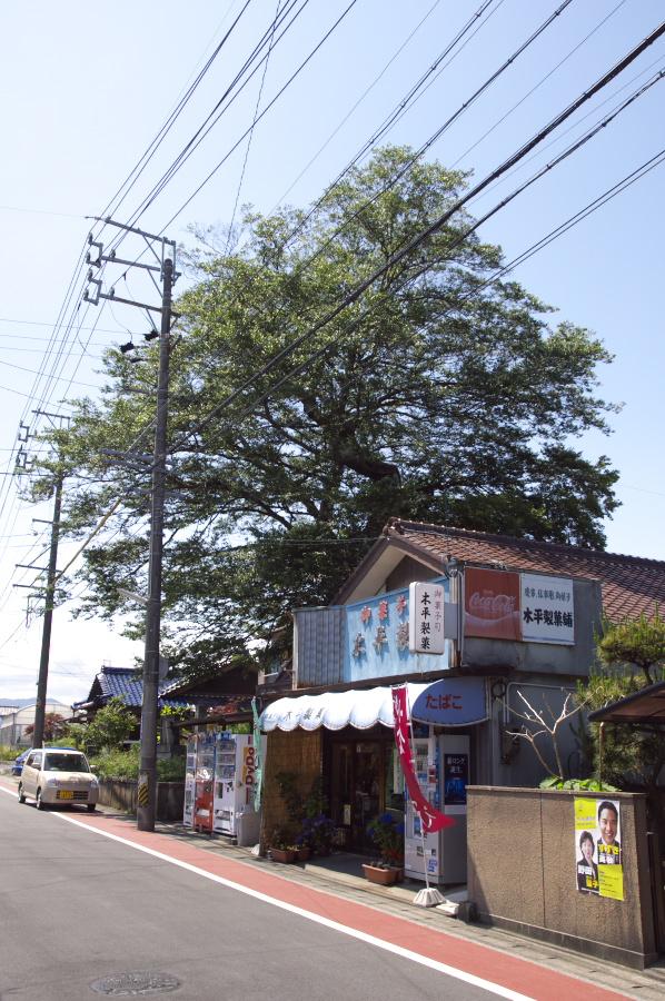 野村一里塚,茶屋付き