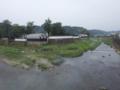 球磨川の中州に人吉城