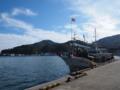 丁度船が入っていた女川港