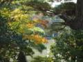 小さい庭園に小さい秋