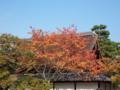 家屋と紅葉の取り合わせは綺麗