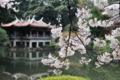 台湾屋敷を背景に