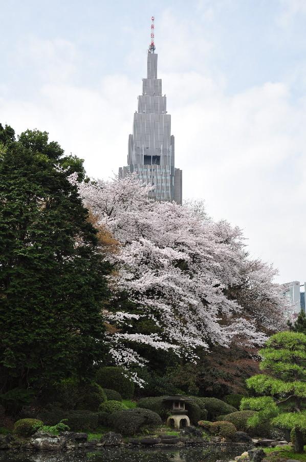 ドコモ塔に桜が映える