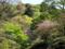 人工的里山の風景