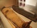 エジプトのミイラ、横たわる