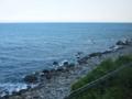 伊豆の海っ