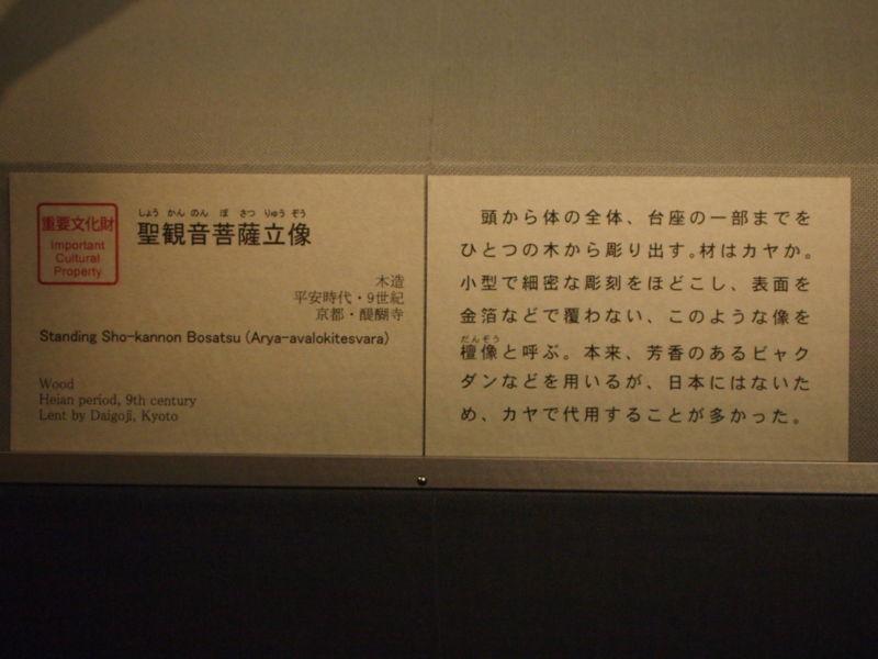 20110102110429