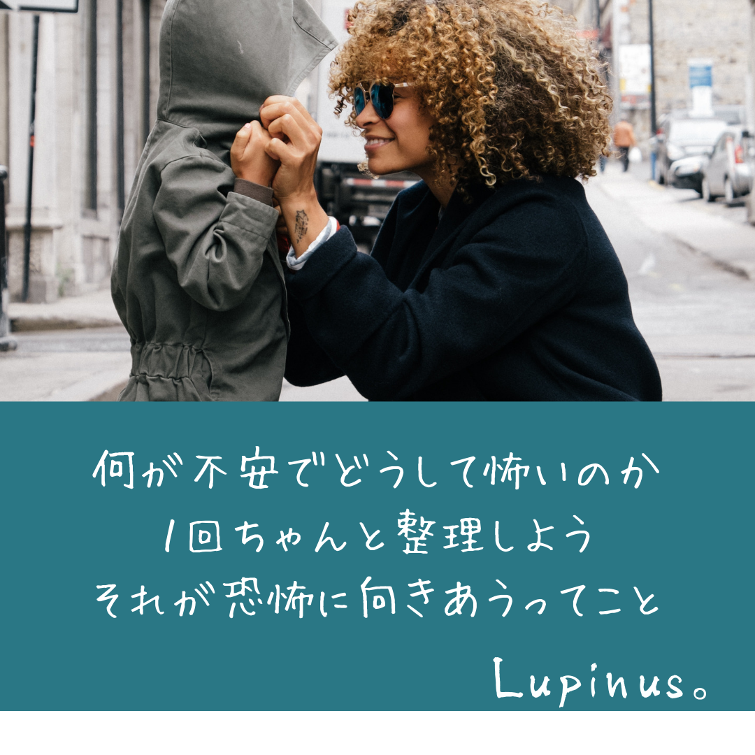 f:id:Lupinus104:20200702044821p:plain