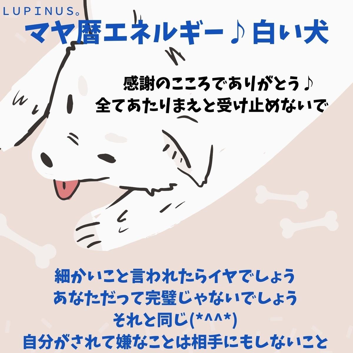 f:id:Lupinus104:20200914053431j:plain