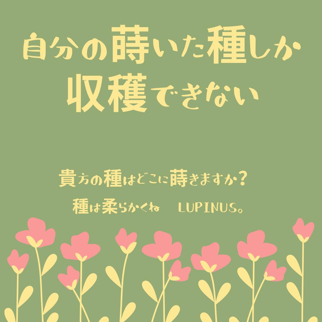 f:id:Lupinus104:20201207061247p:plain