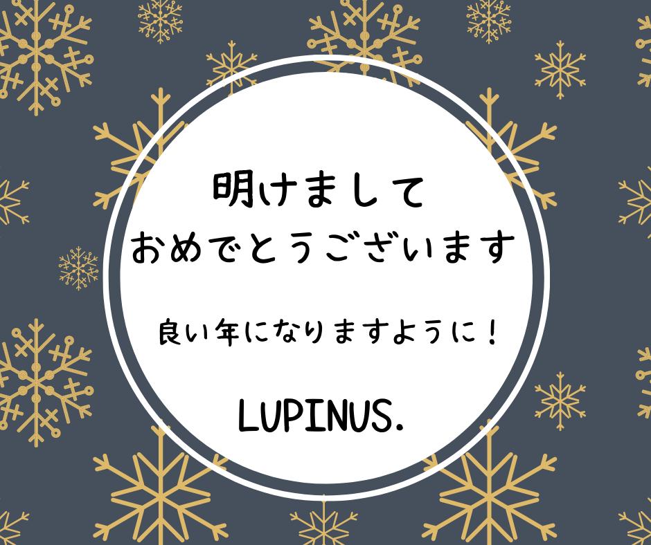 f:id:Lupinus104:20210102040352p:plain