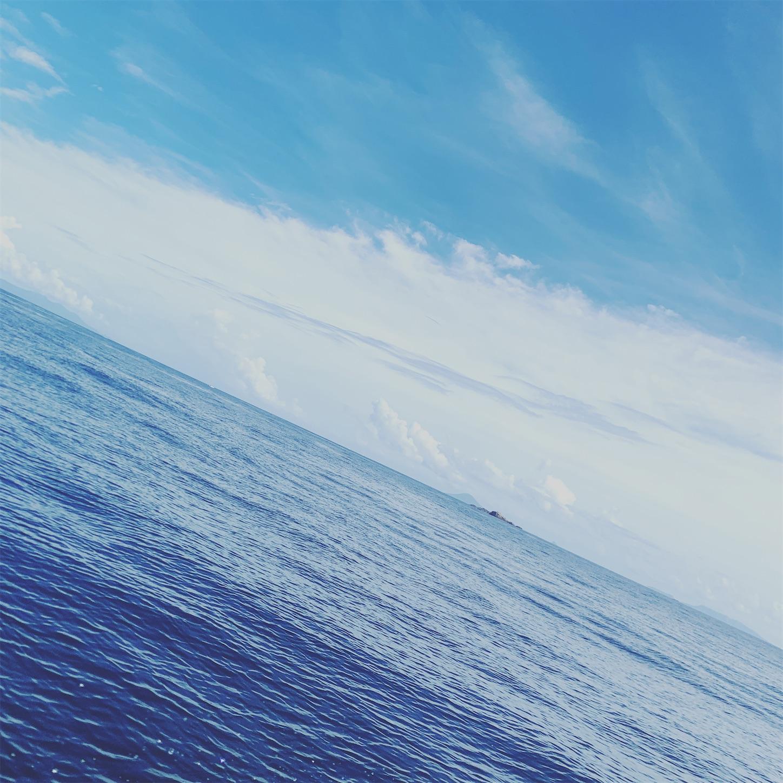 f:id:Lurehirahei:20201224171257j:image
