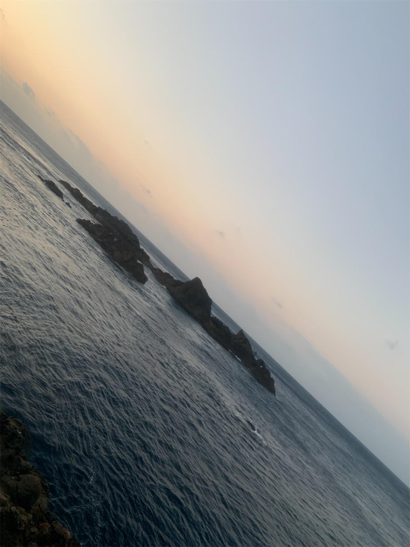 f:id:Lurehirahei:20210116215100j:image