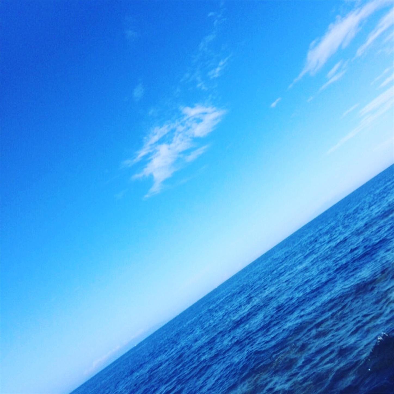 f:id:Lurehirahei:20210123182524j:image