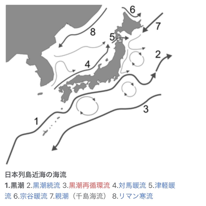 f:id:Lurehirahei:20210205215658j:image