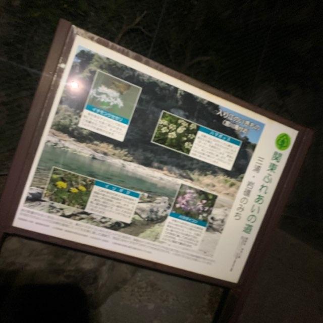 f:id:Lurehirahei:20210416072514j:image