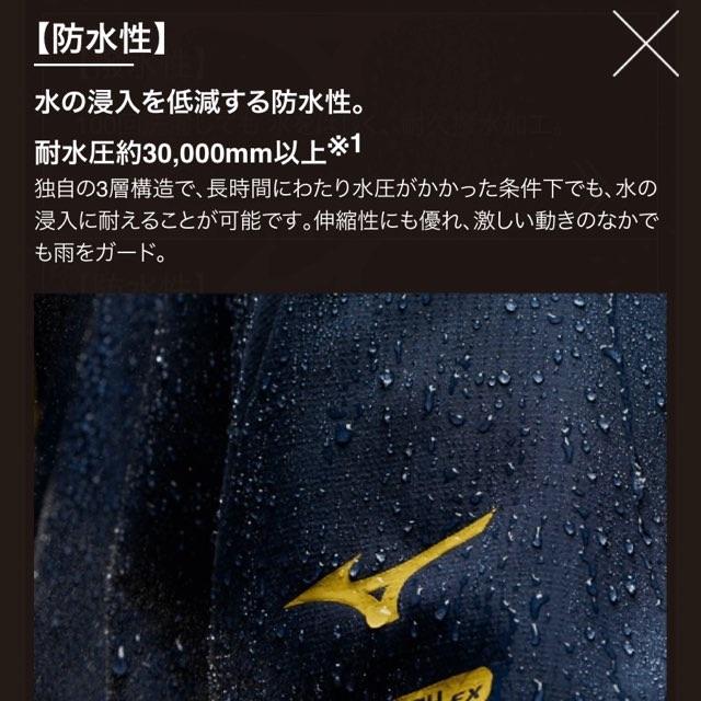 f:id:Lurehirahei:20210425170021j:image