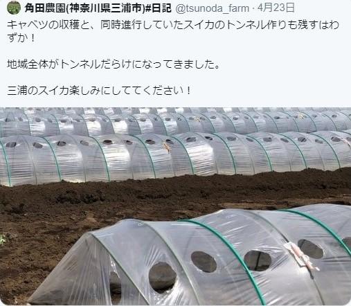 f:id:Lykeion_Tokyo:20200516012234j:plain