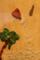 六本木アートナイト 六本木クロッシング 現代アート