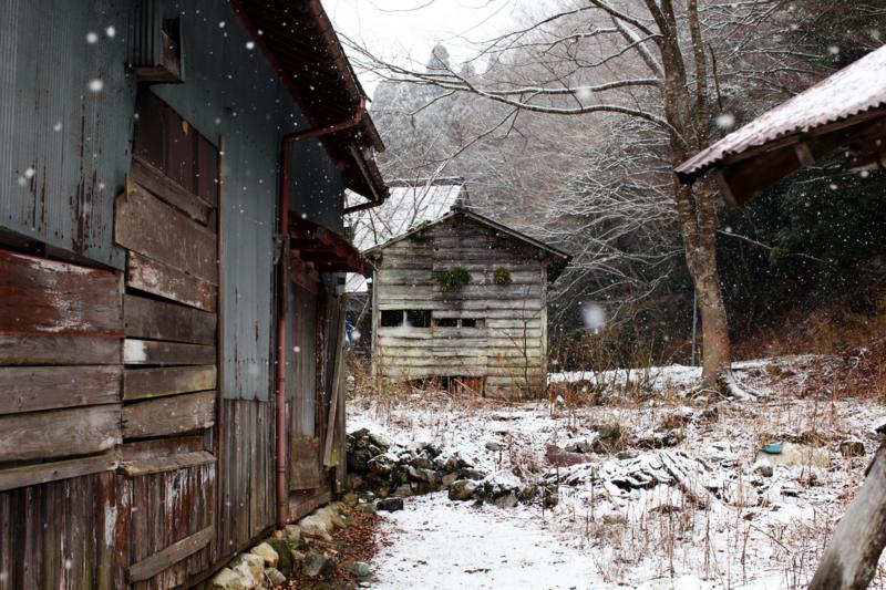 http://cdn-ak.f.st-hatena.com/images/fotolife/M/MAREOSIEV/20101230/20101230113300.jpg
