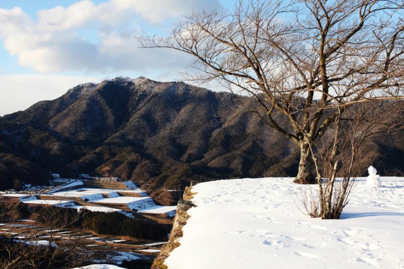 http://cdn-ak.f.st-hatena.com/images/fotolife/M/MAREOSIEV/20110130/20110130161330.jpg