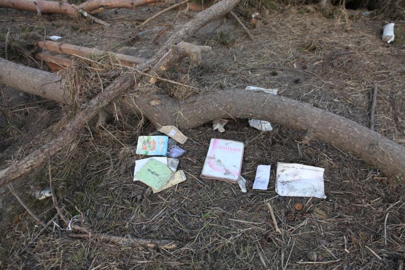 http://cdn-ak.f.st-hatena.com/images/fotolife/M/MAREOSIEV/20110403/20110403162003.jpg