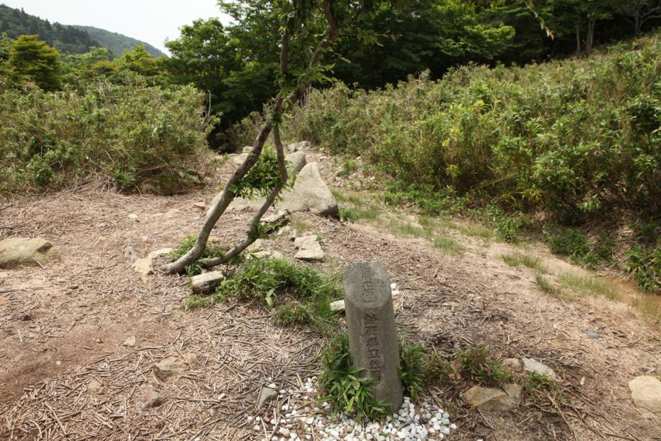 http://cdn-ak.f.st-hatena.com/images/fotolife/M/MAREOSIEV/20120624/20120624233550.jpg