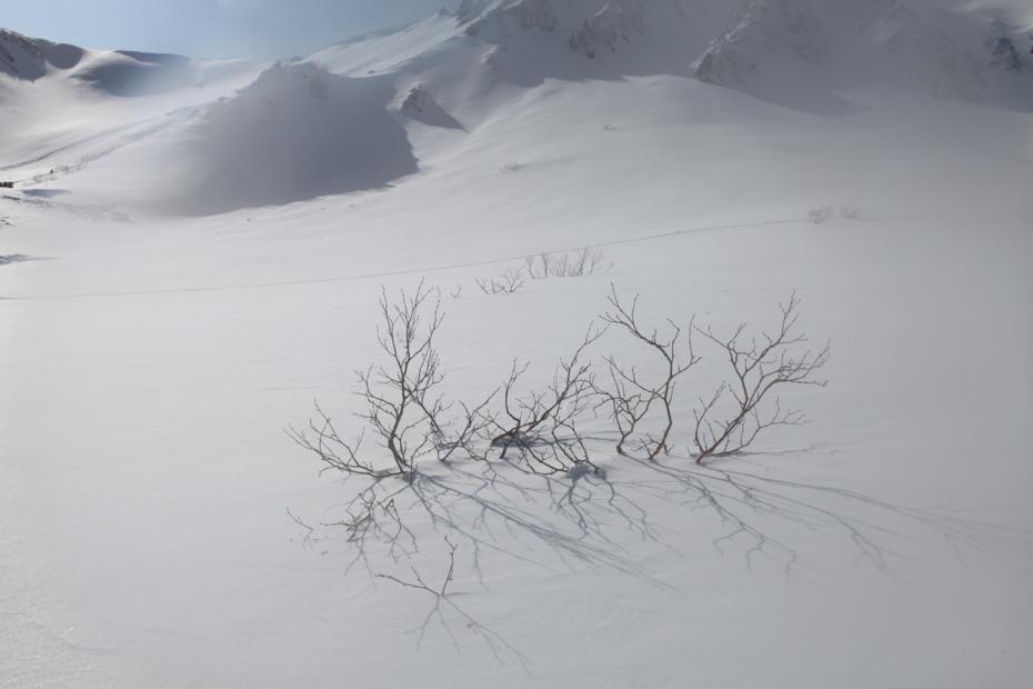 http://cdn-ak.f.st-hatena.com/images/fotolife/M/MAREOSIEV/20121111/20121111222348.jpg
