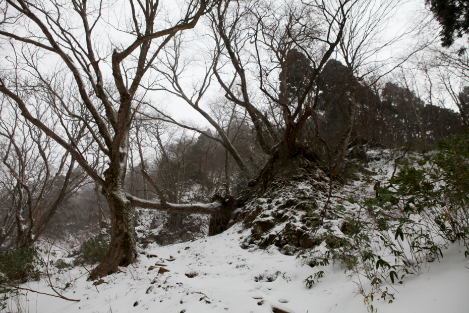 http://cdn-ak.f.st-hatena.com/images/fotolife/M/MAREOSIEV/20121215/20121215181731.jpg