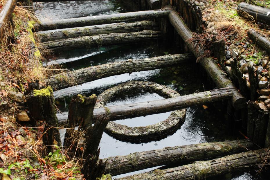 http://cdn-ak.f.st-hatena.com/images/fotolife/M/MAREOSIEV/20121231/20121231135144.jpg