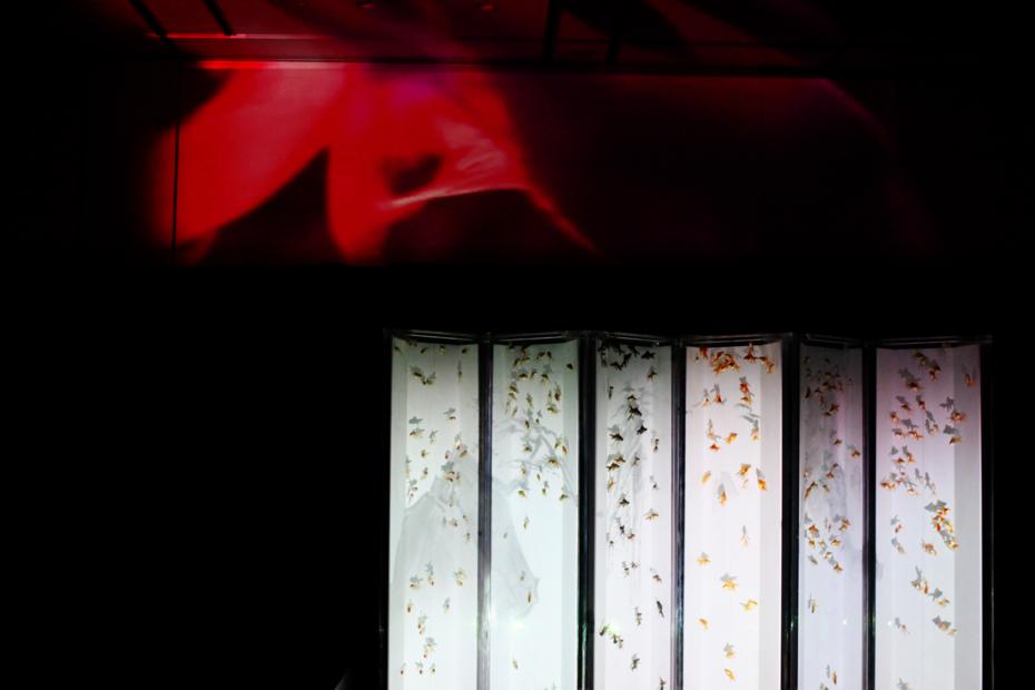 http://cdn-ak.f.st-hatena.com/images/fotolife/M/MAREOSIEV/20130114/20130114174243.jpg