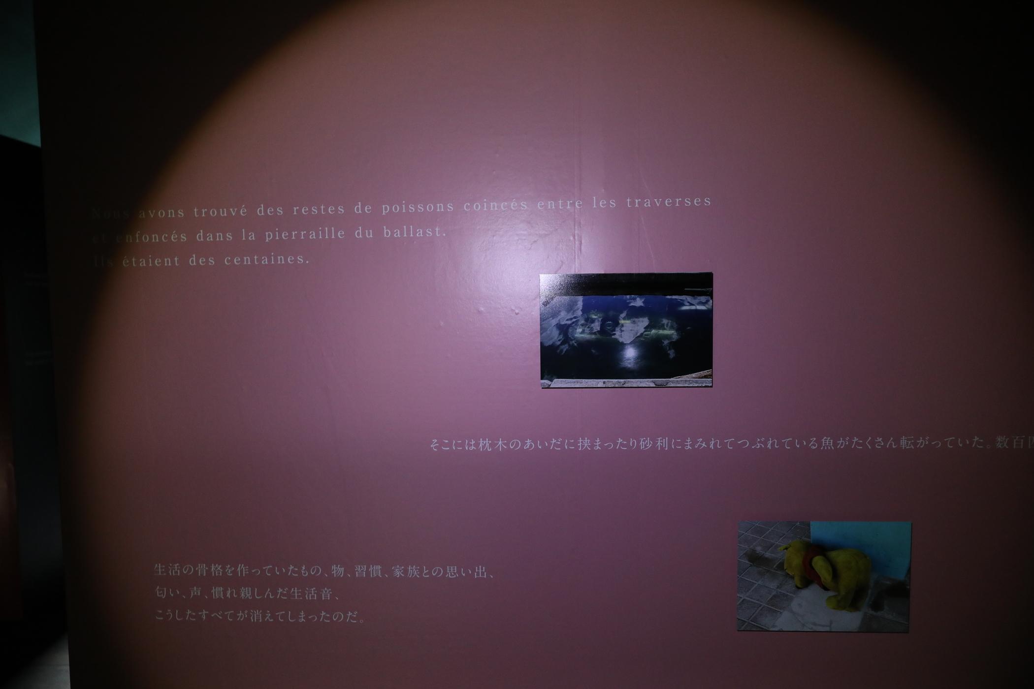 f:id:MAREOSIEV:20211002001334j:plain