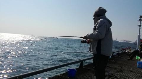 本牧海づり施設の釣り場・ポイント ...