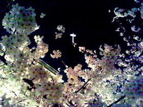 f:id:MODISTE:20080328010437j:image:w200