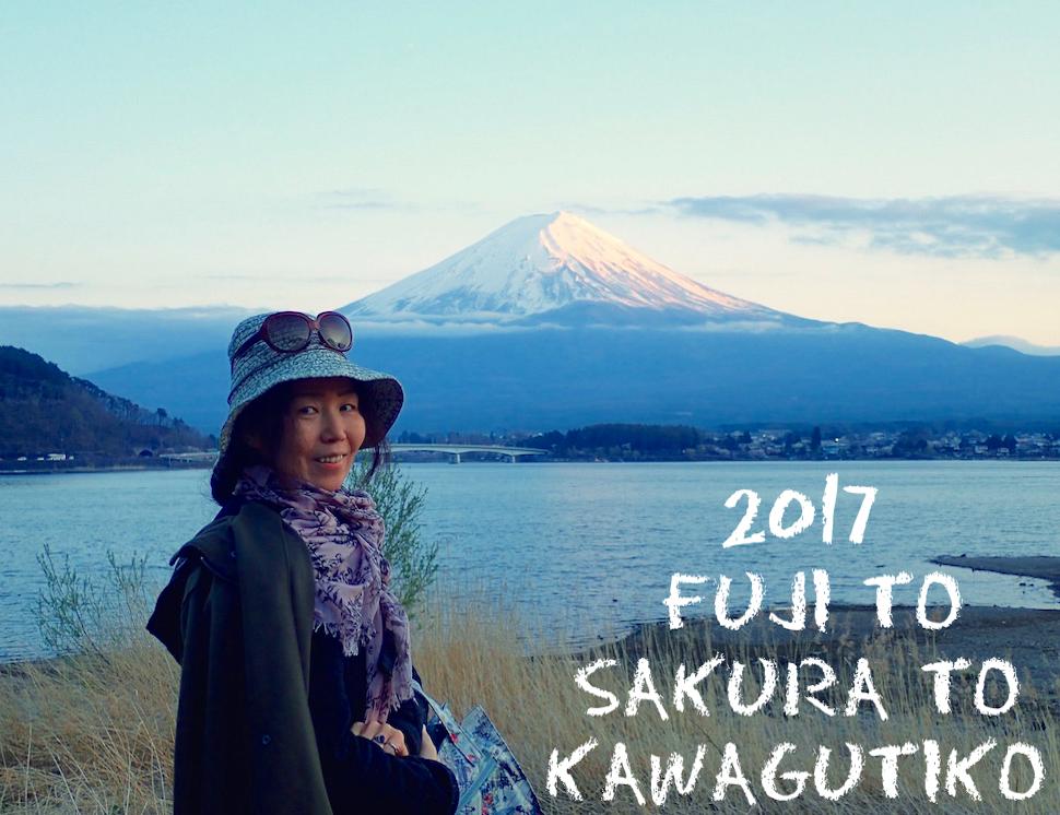 河口湖から望むゆうんだい雪帽子の富士山