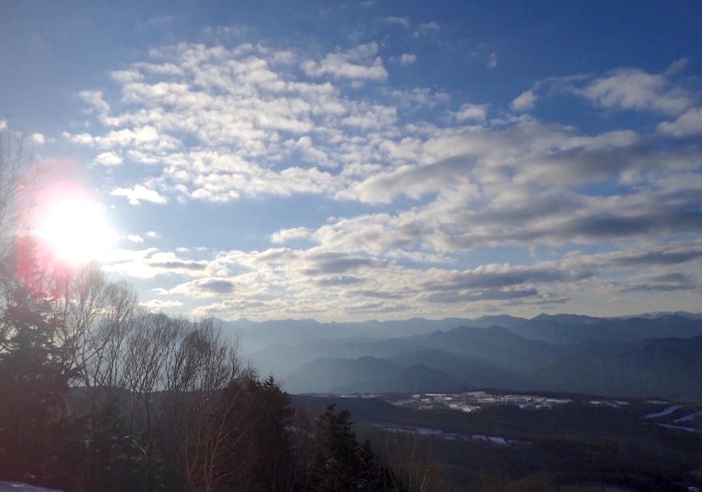 木々の間からのぞく太陽と流れる雲