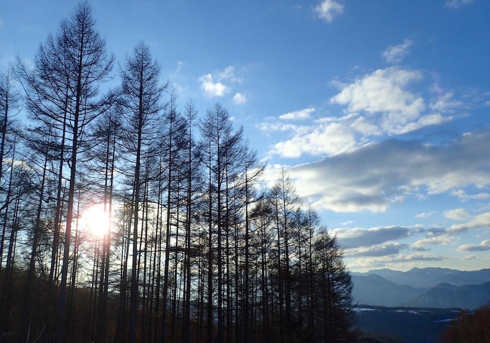 雪山樹木のシルエット
