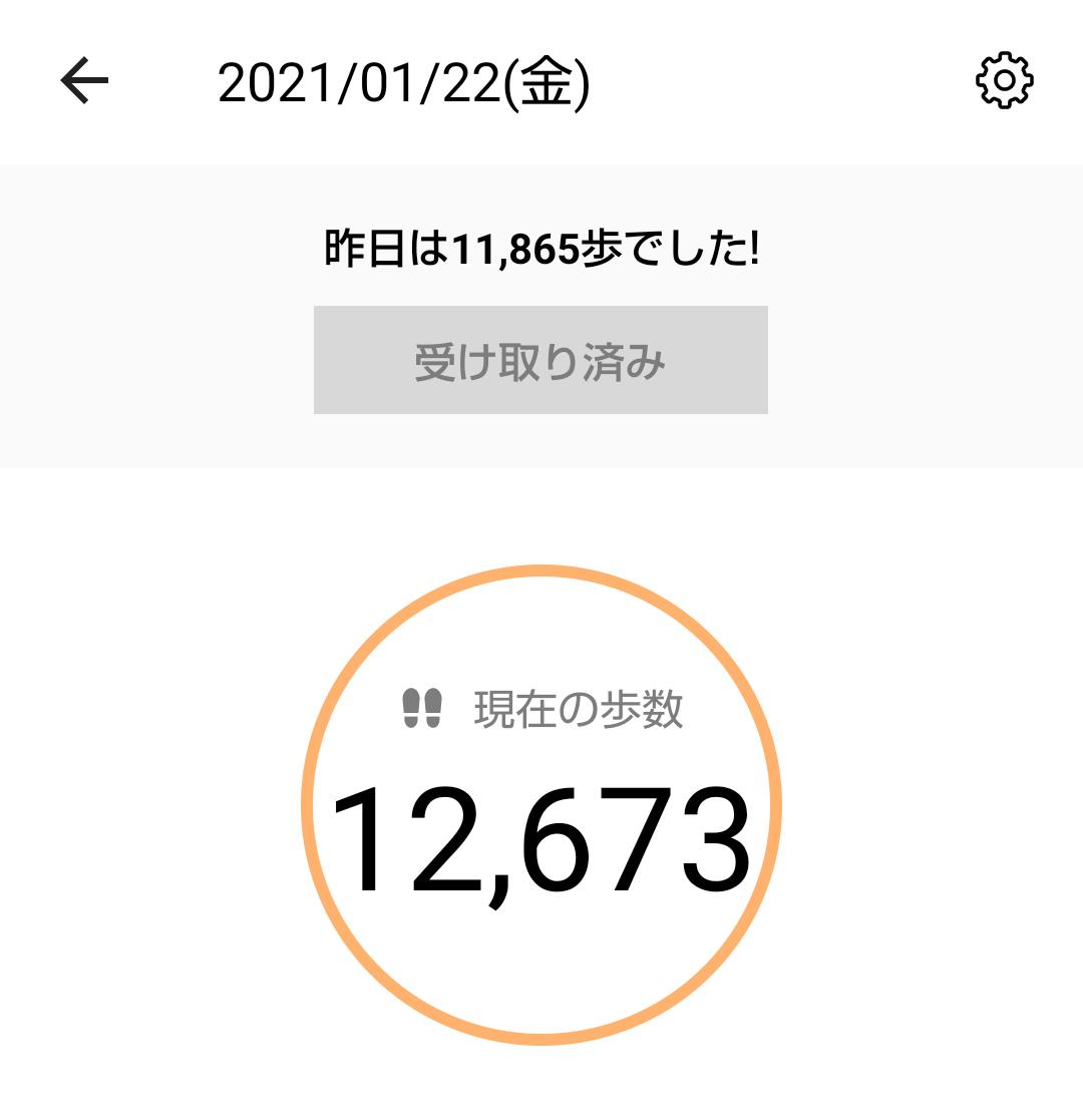 f:id:MUJI:20210122154137p:plain