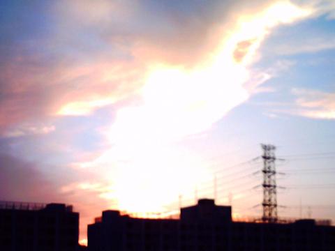08-08-07/VQ1005