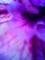 光と影/VQ1005+クローズアップレンズ