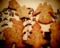 クッキー/VQ1015